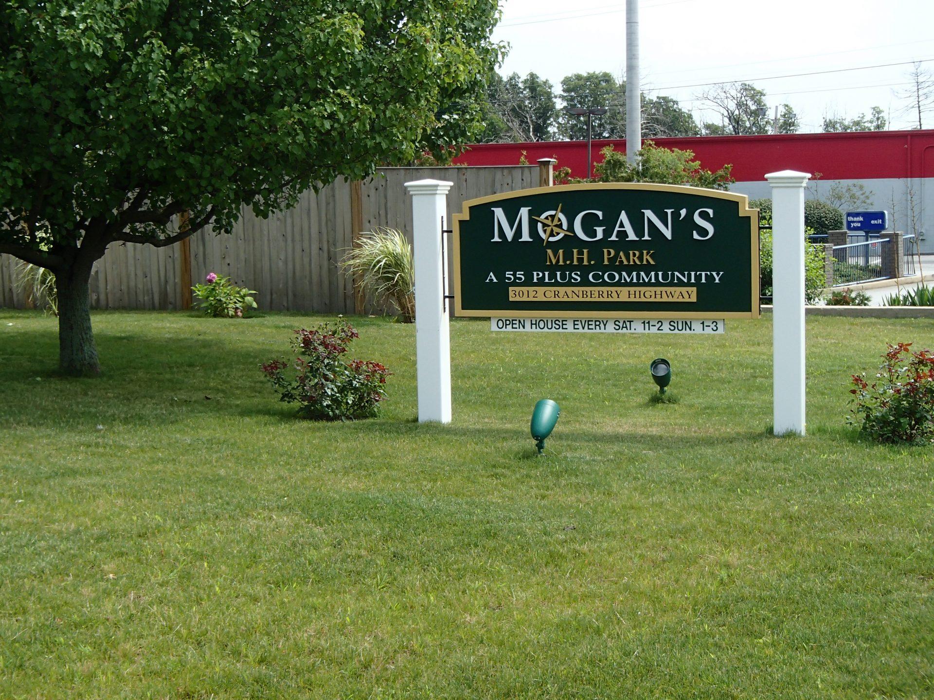 Mogans (1)